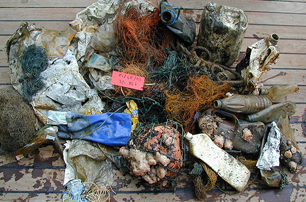 Examples of marine litter collected from the seabed