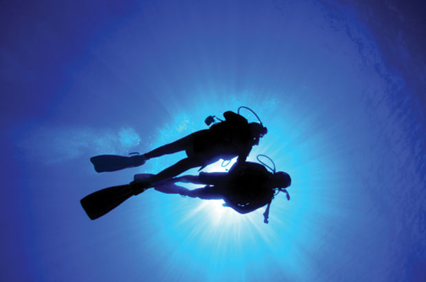 Divers in the sea collecting data