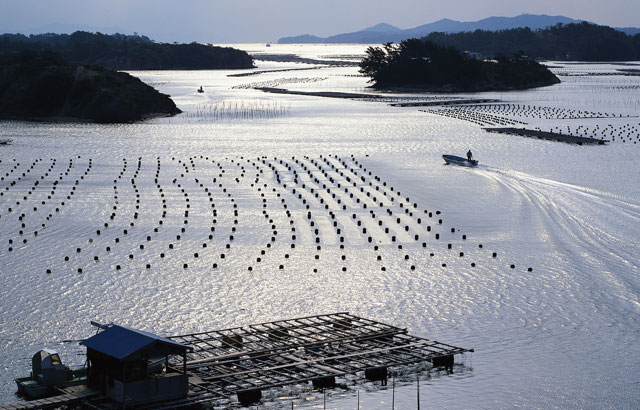 Aquaculture in marine water