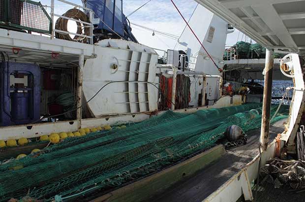 Survey fishing gear on boat's deck
