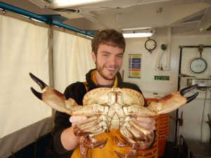 PhD student Phil Lamb on board RV Cefas Endeavour 2015 Poseidon cruise _holding a large male edible crab, Cancer pagurus_