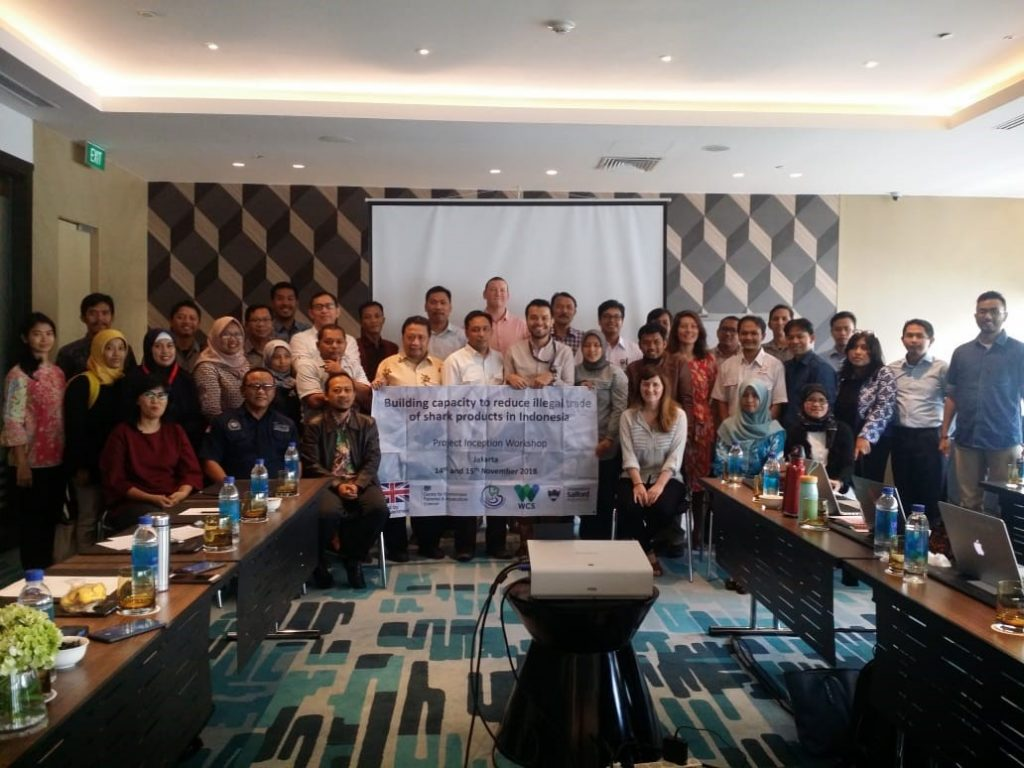 A group of scientists and officials meeting together to discuss the shark fin trade in Indonesia