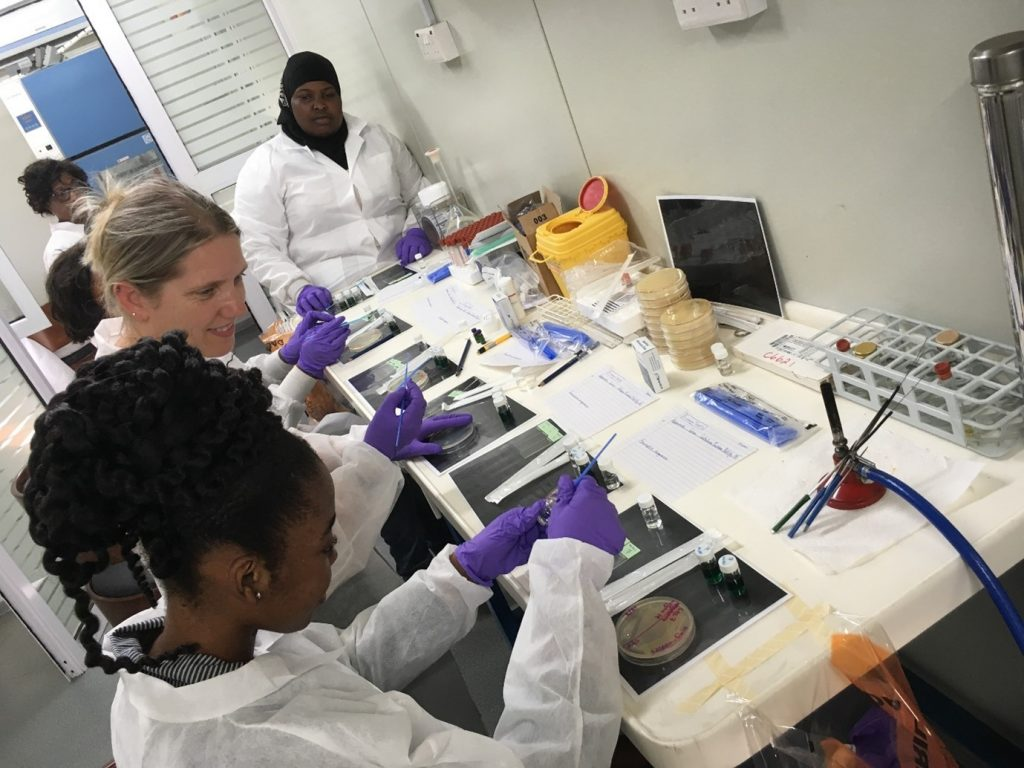 People in a lab preparing samples