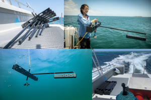 4 photos, From top left to right– mid-water BRUVS stacked and ready for deployment, deployment off the vessel stern by Naima Lòpez, a drifting mid-water BRUV and BRUVS disassembled at the end of the survey