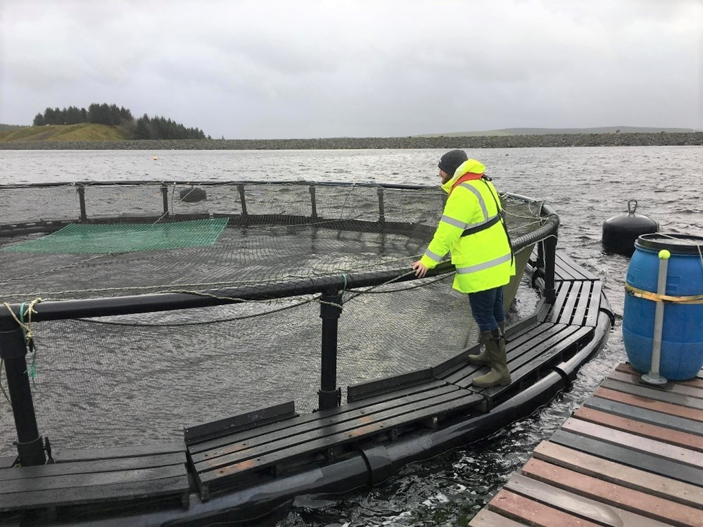 Fish Farm inspection